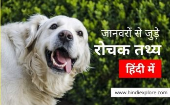 Animal facts by hindiexplore